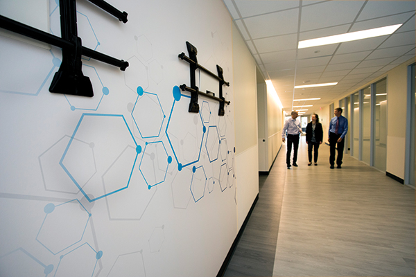 An artistic representation of molecular structures developed by the Department of Pathology to be not only decorative but also a subtle reference to clinical and research science within the department.