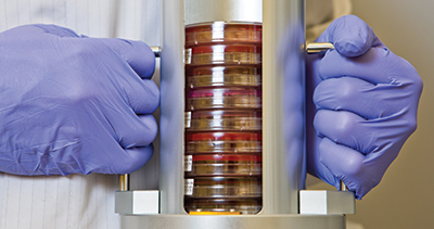 Canister from the unload stacker station of Copan WASPLab with plates that have been designated by digital image review to be removed from the incubator for transfer to a workstation to complete ID and susceptibility testing processing.