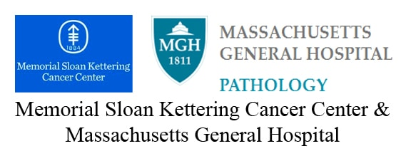 Great summer in Boston and Thoracic Pathology Course – CAP TODAY